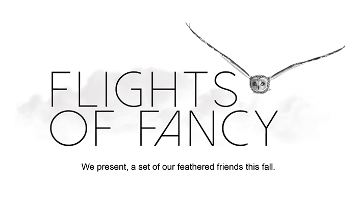 Silver Spoon Jewelry Flights of Fancy